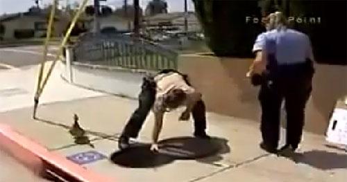 Una mamá pato pide ayuda a la policía