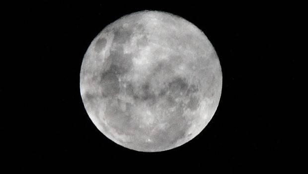 Desde bolsas con orina a fotos familiares- Aumenta preocupación por basura lunar