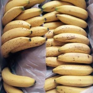 ¿No lo sabías? Los plátanos que no se cultivan de forma natural suelen 'esconder' en su interior restos de un tipo de pesticida elaborado con gambas y cangrejos. Para asegurarte, compra siempre los orgánicos. (Foto: Instagram / @plantbasedunni).