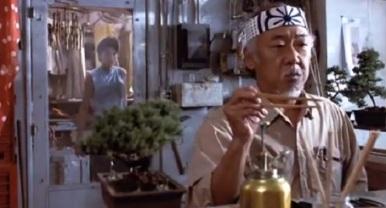 03-karate-kid-mr-miyagi