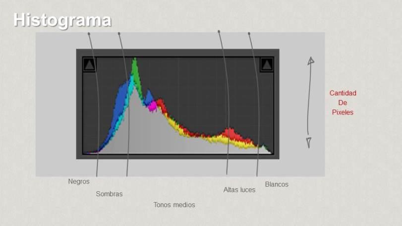 histograma-1