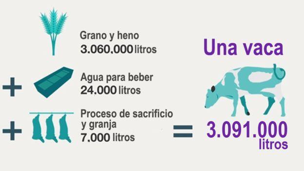 _90004205_agua-vaca