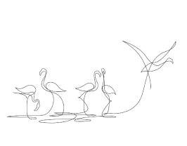 fm-dibujos-de-animales-hechos-de-una-sola-linea-por-emma-stephane-05