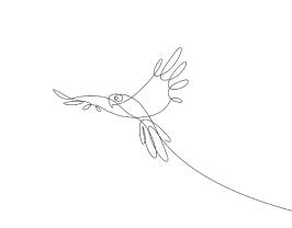 fm-dibujos-de-animales-hechos-de-una-sola-linea-por-emma-stephane-06